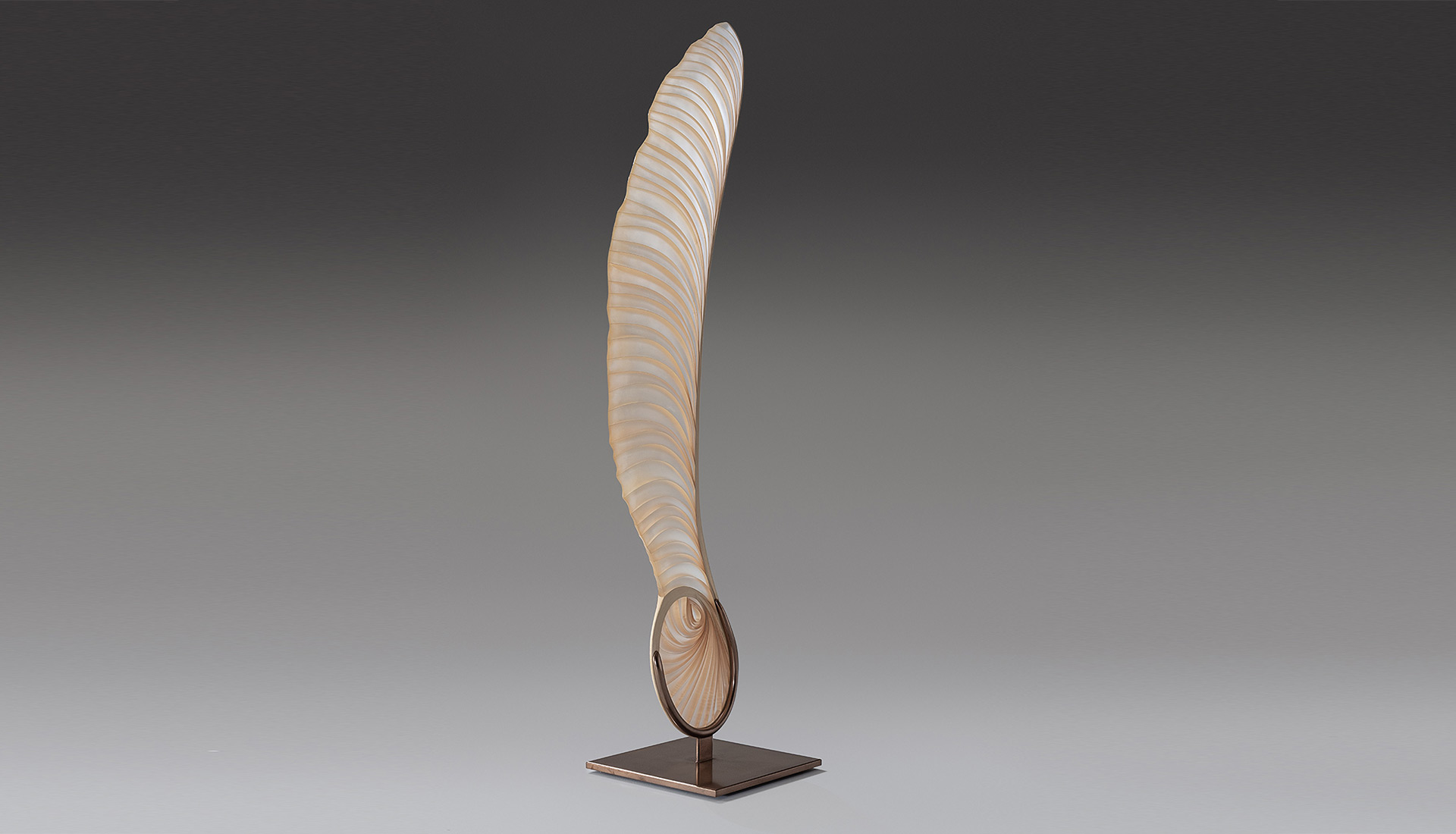 Marc Fish Ethereal Sycamore Seed